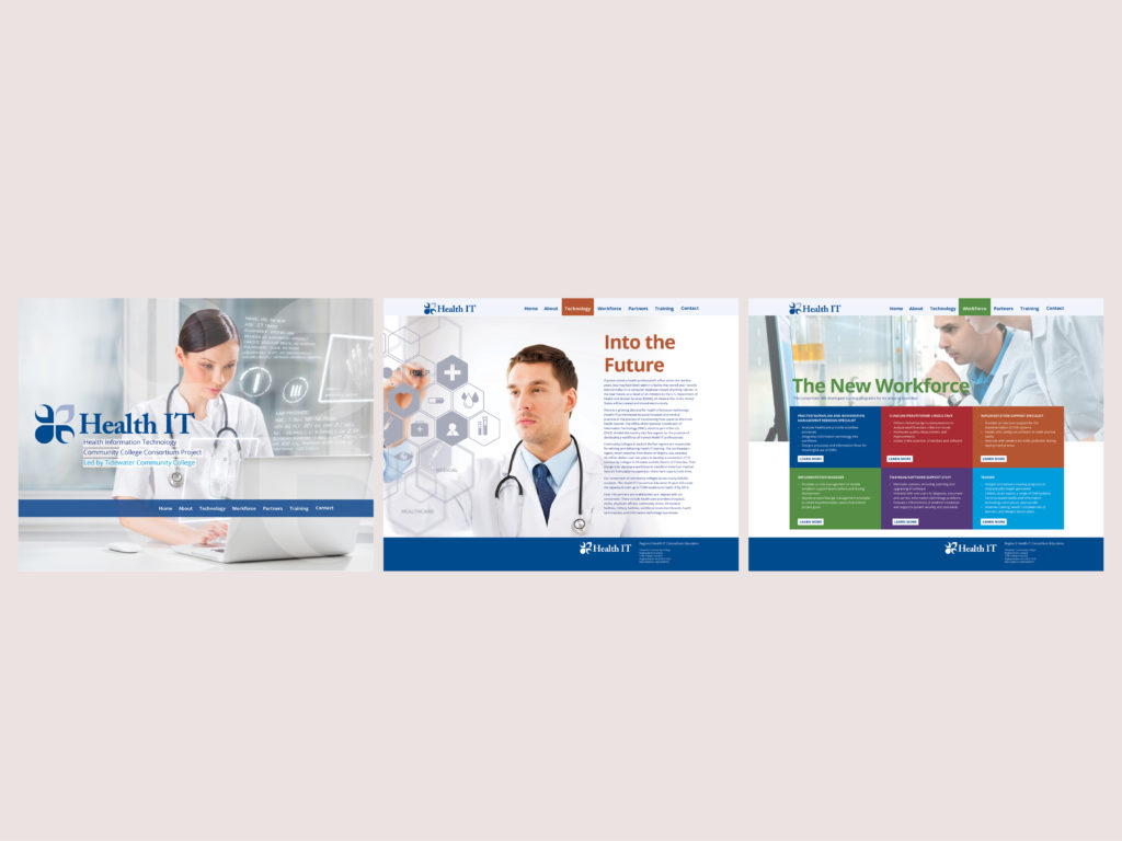 Health IT Website Concept