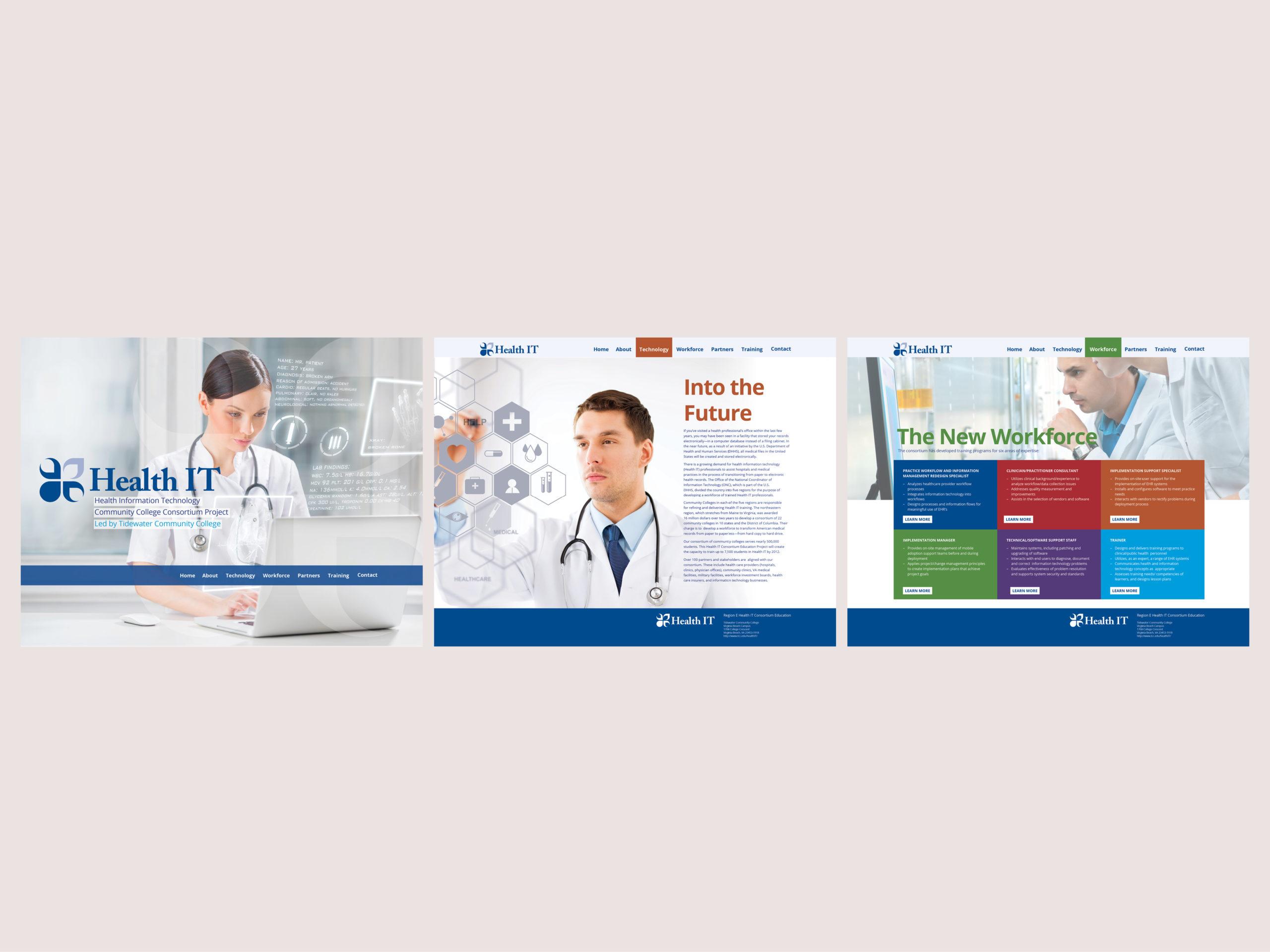 Health IT Website Concept